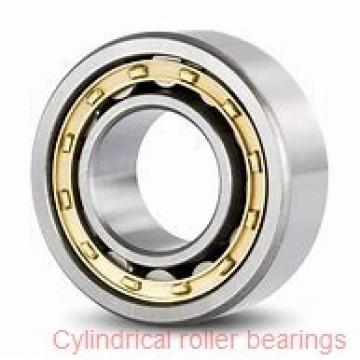 15 mm x 35 mm x 11 mm  FAG NJ202-E-TVP2 Cylindrical Roller Bearings
