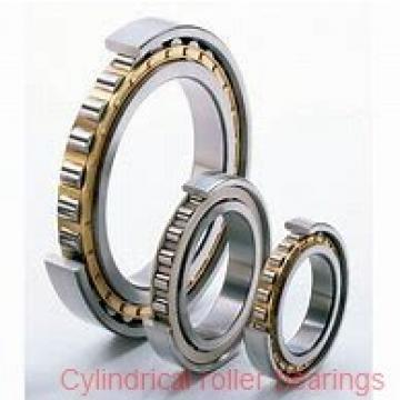 25 mm x 62 mm x 24 mm  FAG NU2305-E-TVP2 Cylindrical Roller Bearings