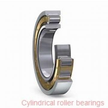 85 mm x 150 mm x 36 mm  FAG NU2217-E-TVP2 Cylindrical Roller Bearings